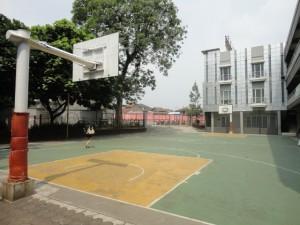Lap basket
